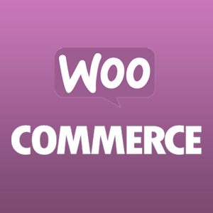 How to disable woocommerce styles in my theme