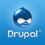 transfer drupal website
