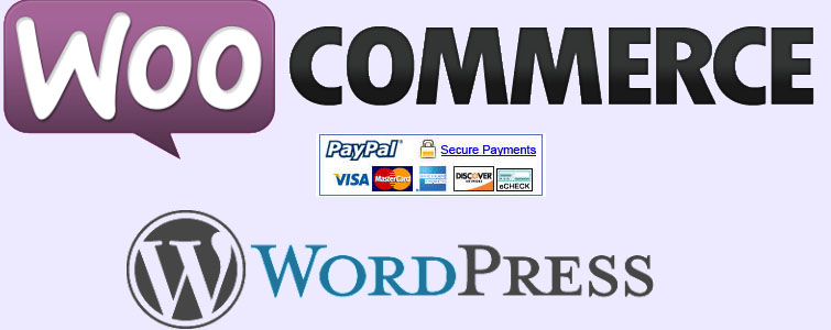 How to change the default PayPal icon WooCommerce
